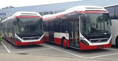 Już 30 hybryd Volvo w Sosnowcu