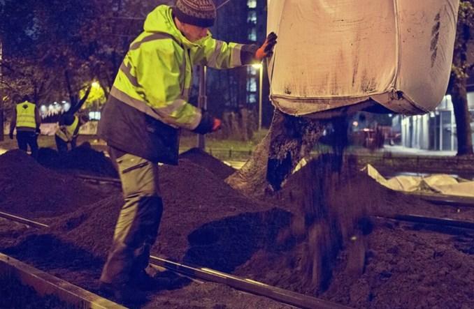 Warszawa. Tramwajarze obsadzili torowisko zielenią