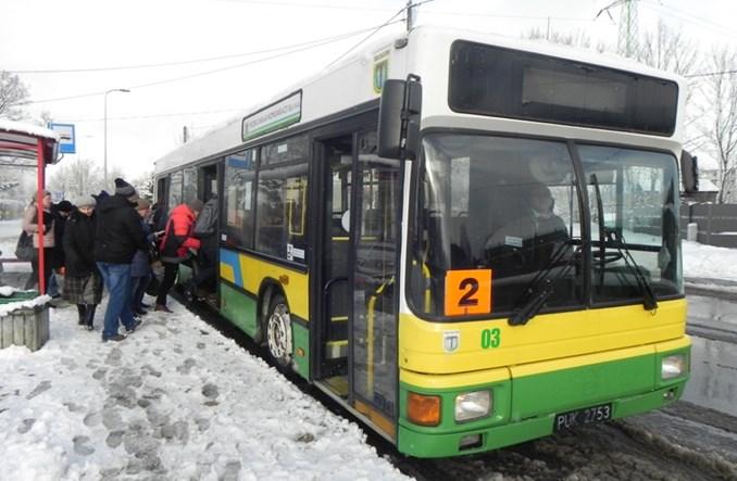 Bezpłatna komunikacja w Bełchatowie przyciąga pasażerów