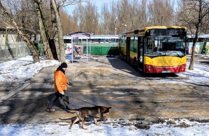 Warszawa: Stary autobus MZA w służbie bezpańskich psów