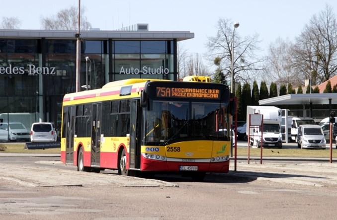 Łódź rozstrzyga dwa przetargi na dostawę i najem autobusów