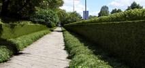 Nowatorska zielona Wawelska z dwumetrowym żywopłotem [wizualizacje]