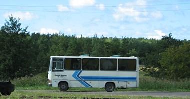 Estonia. Od lipca darmowa komunikacja w całym kraju