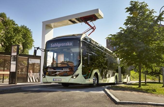 Göteborg. Przegubowe elektrobusy Volvo na Volvo Ocean Race