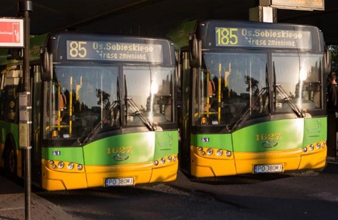 Poznań. ZTM udostępnia dane lokalizacji autobusów i tramwajów