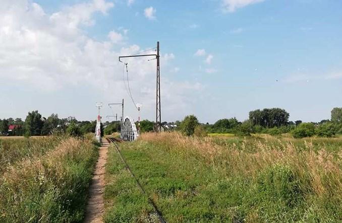 Tramwaj do Lutomierska: Ukradziono pół km sieci trakcyjnej. Kolejny już raz