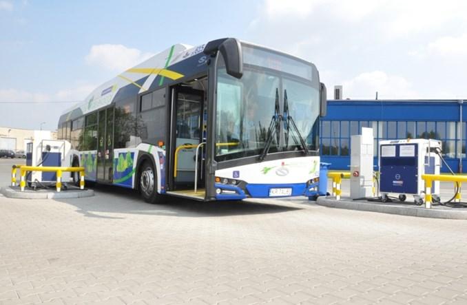 Wiadomo jak ma wyglądać Narodowy Elektrobus