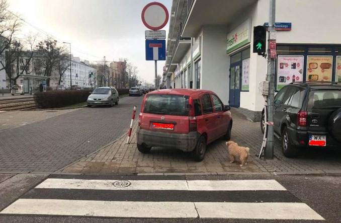 Warszawa. Czego nie widać z limuzyny?