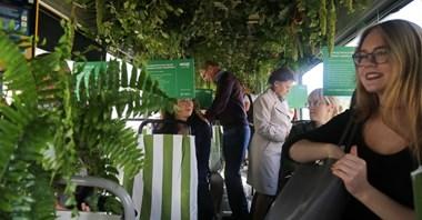 Górny Śląsk. Dżungla w tramwaju
