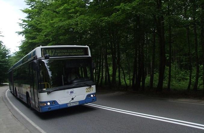 Gdynia stworzy kontrapas… dla autobusów