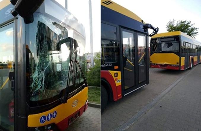 Łódź: Niegroźna stłuczka nowych Solarisów