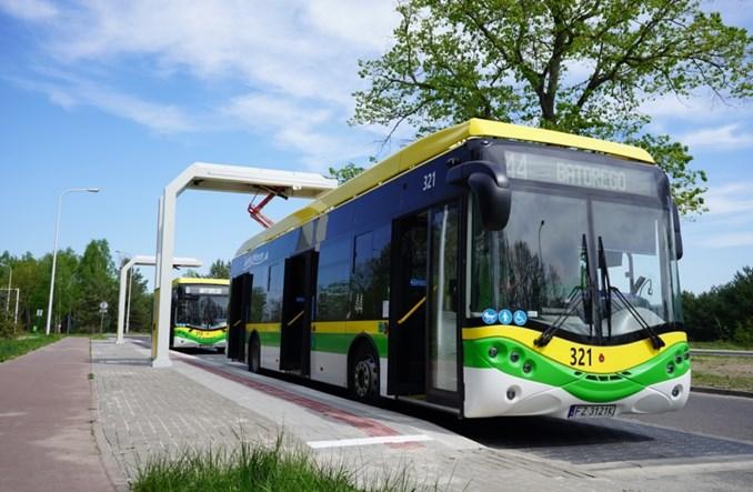 Miasta już nie chcą ogromnych baterii do autobusów [rozmowa]