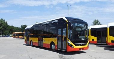 Hybrydowe autobusy Volvo już w Grudziądzu