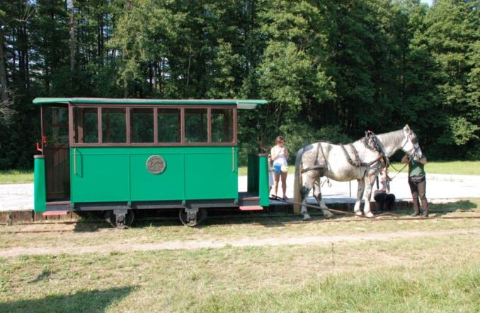 Tramwaj konny w Mrozach (fotorelacja)