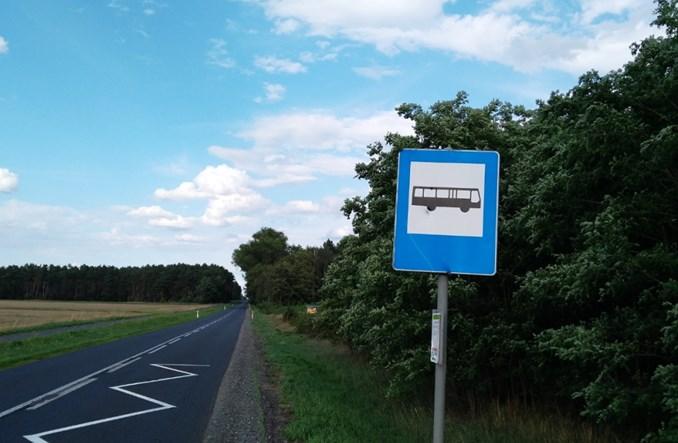 Łódzkie autobusy marszałkowskie: gdzie, o której i dokąd – nie wiadomo