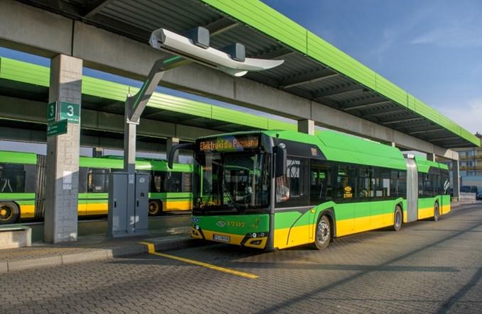 Poznań wybiera elektrobusy Solarisa