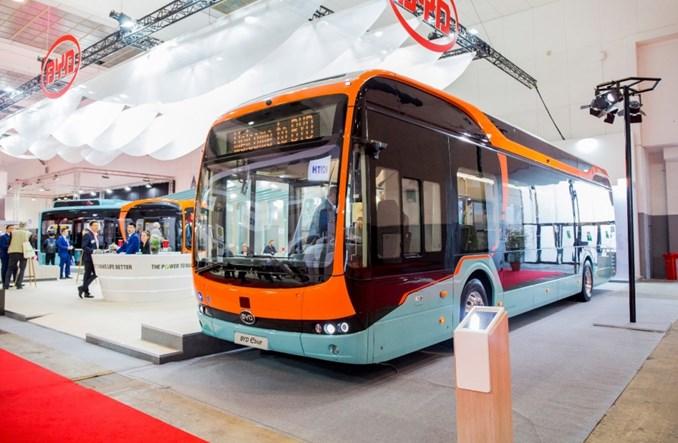 BYD z największym kontraktem na elektrobusy w Europie. 259 pojazdów