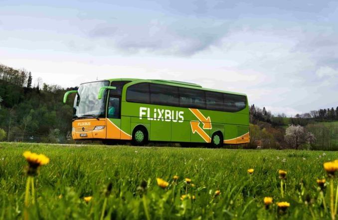 FlixBus Polska: Rok ekspansji i poprawy standardu