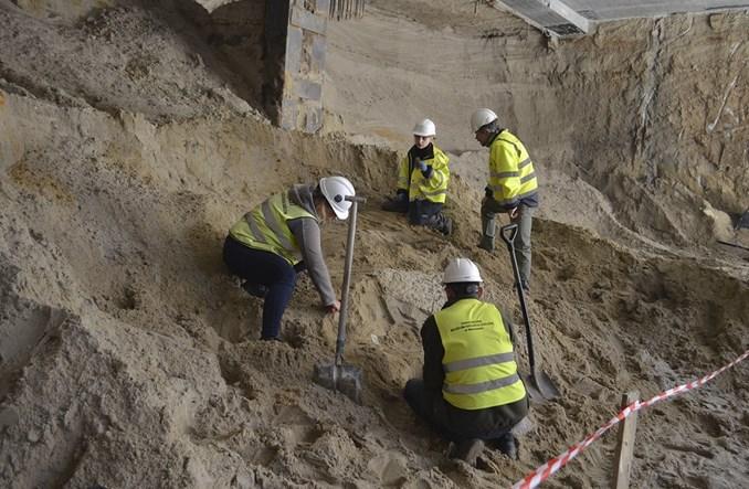 Kości prehistorycznych zwierząt na budowie metra na Bródno