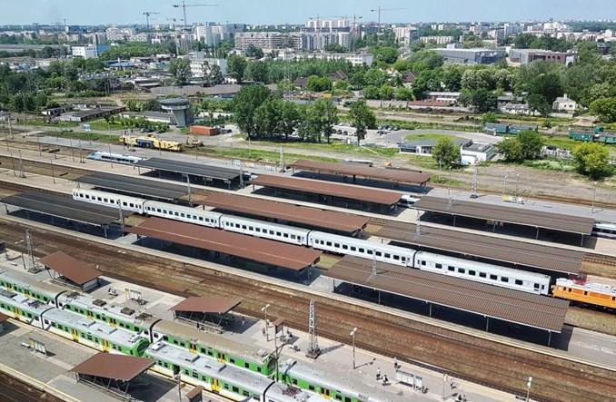 Warszawa Zachodnia. PKP PLK chcą wyciąć 3200 drzew. W zamian posadzą kilkadziesiąt
