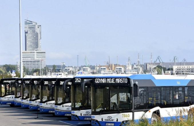 Nowe midibusy na kręte trasy w Gdyni