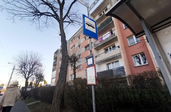 Łódzki marszałek: To nie koniec budowy systemu autobusów regionalnych