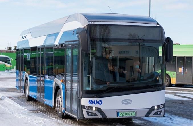 MPK Poznań zawnioskowało o zakup 84 autobusów wodorowych