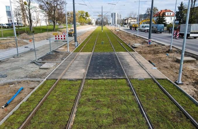 Poznań: Sieć trakcyjna i zielone torowisko tramwaju na Naramowice