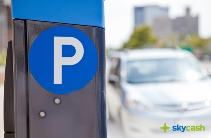 Strefy Płatnego Parkowania: Za dużo państwowych regulacji