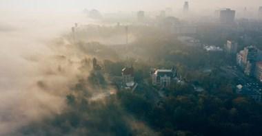 Smog: Czy można żądać odszkodowania od państwa?