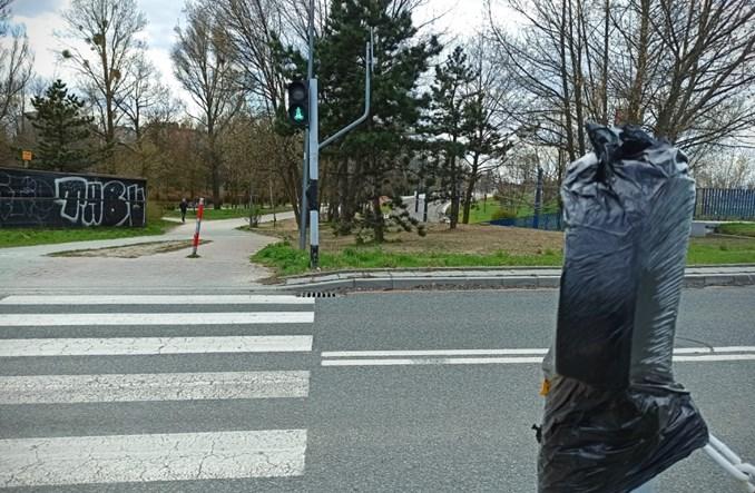 Częstochowa przywraca przyciski sygnalizacji dla pieszych