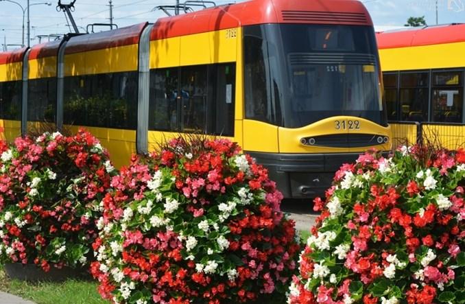 Warszawa zazielenia pętle komunikacji miejskiej