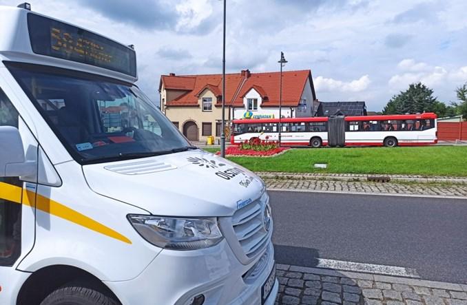 Ruszyła komunikacja gminna w jurajskim Olsztynie