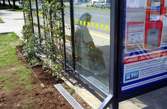 Radom zazielenia przystanki autobusowe