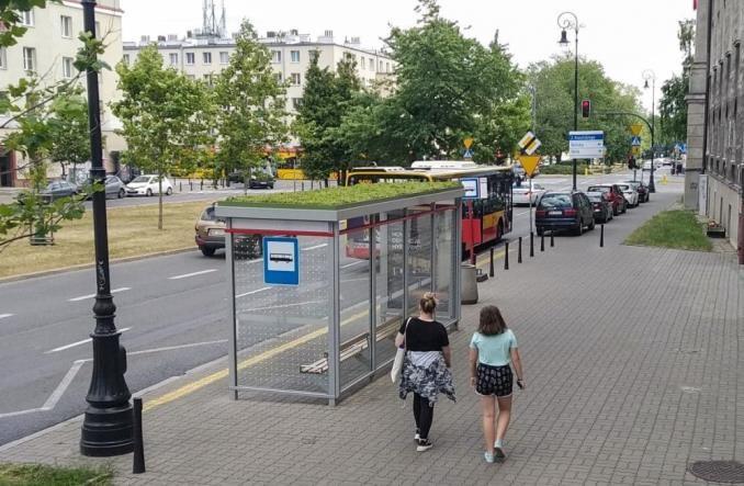 Warszawa kontynuuje zazielenianie przystanków