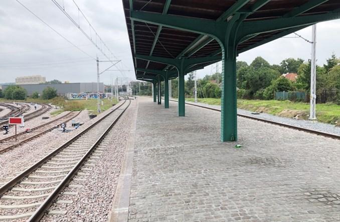 Gdański przystanek-atrapa obok Trako (zdjęcia)