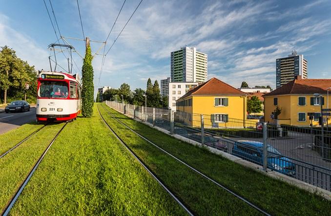 Torowisko tramwajowe we Fryburgu. Trawa między szynami, słup trakcyjny obrośnięty bluszczem.