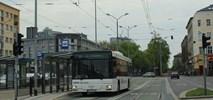 Szczecin jak Helsinki. Będzie można zamówić autobus przez telefon