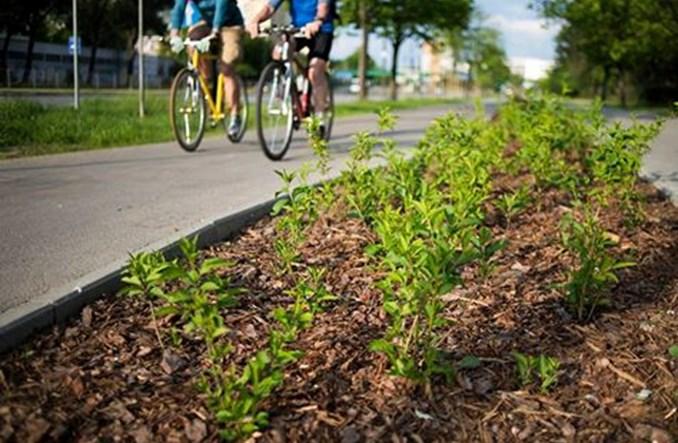 Europejskie miasta rywalizowały o tytuł rowerowej stolicy. Zwyciężył Gdańsk
