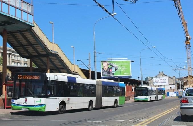 Szczecin szuka przewoźnika na linie na żądanie