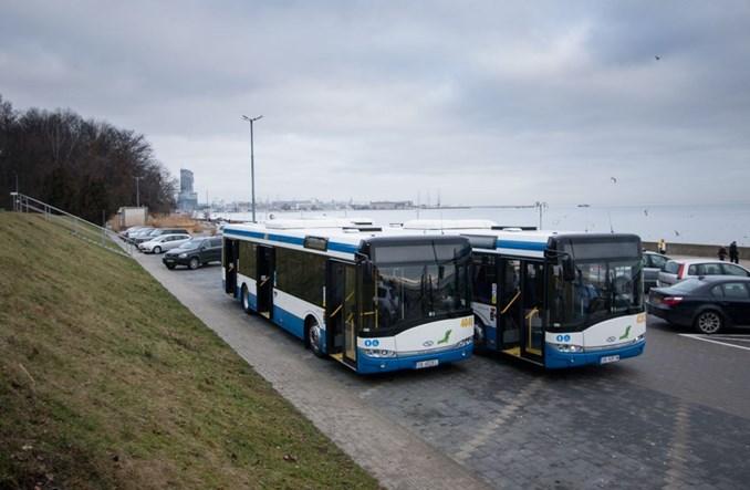 Osiem nowych Solarisów wyjedzie na dwie z najdłuższych tras w Gdyni