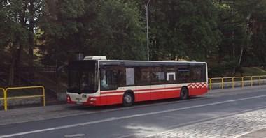 Jelenia Góra z częściowymi ofertami na 20 autobusów