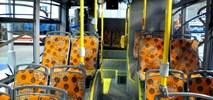 Nowa Sól: Do trzech razy sztuka. Trzy oferty na cztery autobusy