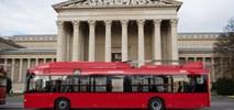 Budapeszt: Większość trolejbusów Solarisa wróciła do ruchu. Wykluczono możliwość usterki