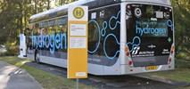 Kallas: Bezpłatny transport to nie jest sprawa UE