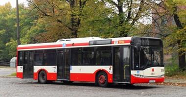 Gdańsk wydzierżawi 48 autobusów różnych długości