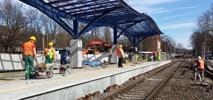 Powstaje przystanek kolejowy Gorzów Wielkopolski Wschód