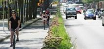 Droga rowerowa zabija biznes?