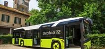 Jeden chętny na dostawy autobusów do Suchego Lasu