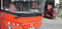 Przewoźnicy autokarowi wycofują się z luksusowych połączeń